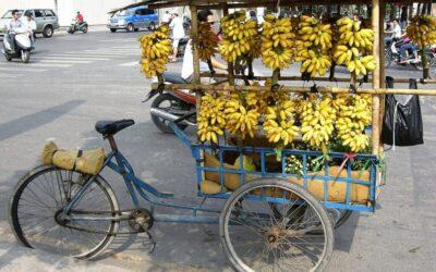 Jedz banany!